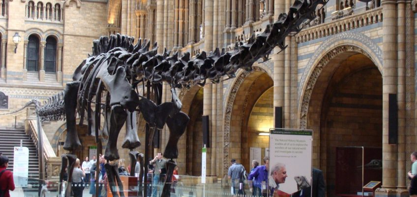 Tech Trends Dippy the Dino App Natural History Museum London Naturenauts